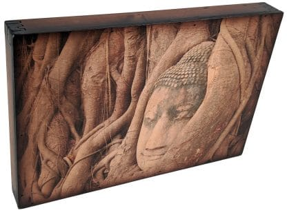 Buddha Statue Roots