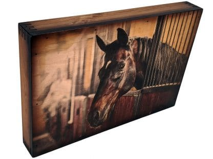 Horse Home Accents