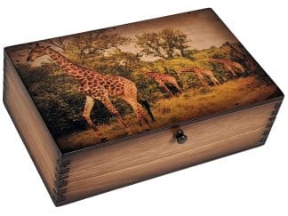 South African Giraffe Medium Box